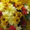 Как из простых осенних цветов сделать красивый букет на 1 сентября